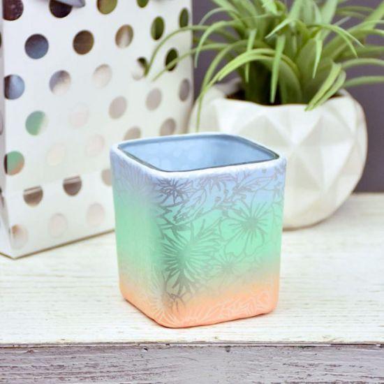 Sculpey Premo™ Pastel and Silkscreened Succulent Planter