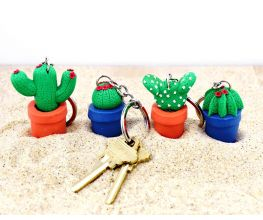 Souffle Cactus Key Rings