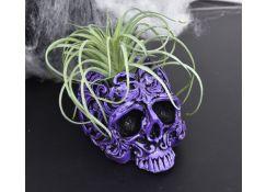 Liquid Sculpey®  Skull Planter