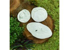 Original Sculpey® Leaf and Seed Pod Fossils
