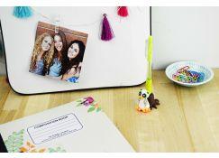 Sculpey Bake Shop® Owl Pen Holder