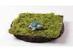 Sculpey III® and Original Sculpey® Turtle Tot