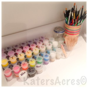 Studio Storage Solutions by KatersAcres |Craft Paint Storage Solution