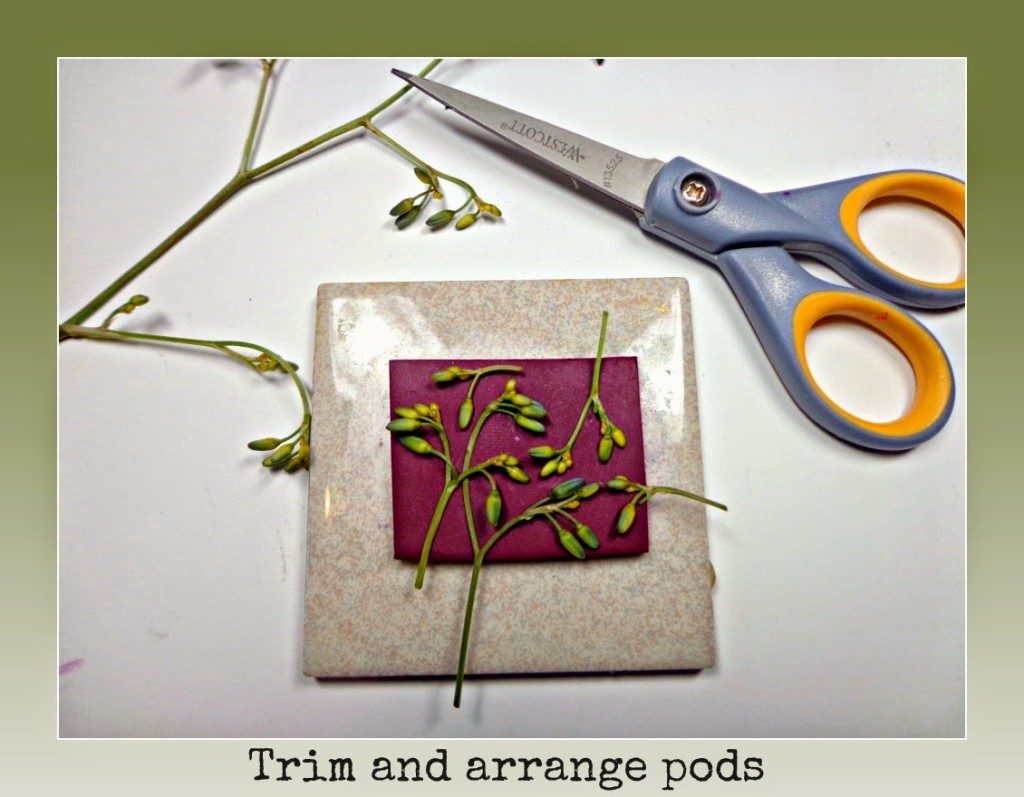 Next, cover your work with a piece of parchment paper. Using an acrylic square, press down to embed plants and stems.
